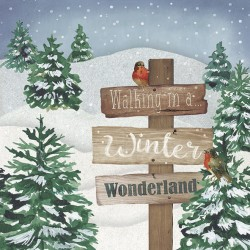 WINTER WONDERLAND 33X33CM 20UND.