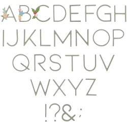"""""""Decorative Type by Lisa..."""