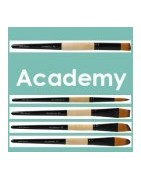 Pinceles serie Academy de la marca artis decor, para uso escolar